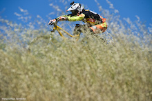 Video: Sea Otter DH - Sea Otter 2013